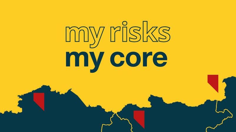 CORE: the risk monitoring platform
