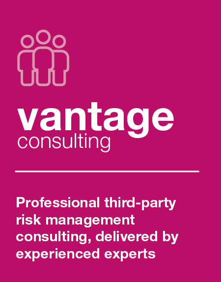 discover vantage consulting