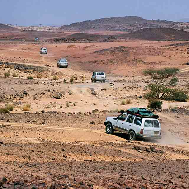 Automotive Expert Brief: Algeria